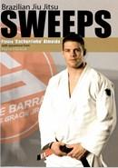 Brazilian Jiu-Jitsu Sweeps with Flavio Almeida