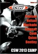 CSW 2013 Camp Vol 01